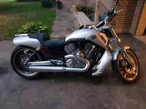 2009 vrod muscle  Cambridge Kitchener Area image 1