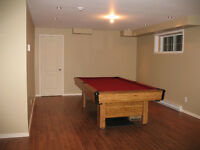 table billard / ping pong