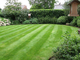 GRASS CUTTING HEDGES FREE QUOTE PERFECT MOWING TREES & LANDSCAPES ALL ASPECTS OF GARDENING
