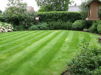 PERFECT MOWING TREES & LANDSCAPES ALL ASPECTS OF GARDENING