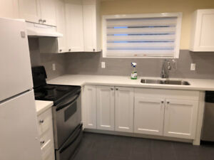 Just Newly Renovated 2 BR & 1 BT Lower Level House in Surrey