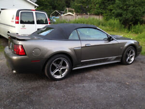 2002 Ford Saleen Covertible MUSTANG