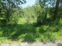 Land For Sale - Hastings, ON