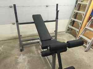 Weightlifting Bench Body Solid Combo Bench London Ontario image 1