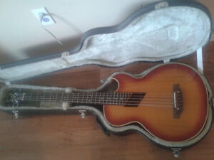 Washburn Acoustic Bass for short-scale acoustic TRADE