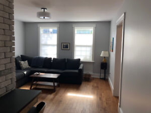 Fully Furnished Downtown Apartment - Nov 1