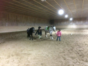 Horse back riding lessons.