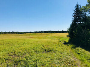 Large 17 Acre Lot In Pennfield NB
