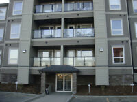 Furnishd 2 bedrm Condo Apt.in Stonebridge.Sasktn; Avail. July 11
