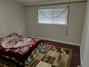Two Room Available fpr rent