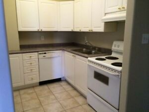 2 bed 2 bath downtown apartment available August