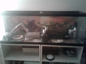 Reptile Tank + Supplies