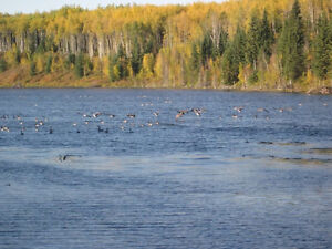 Waterfront Land For Sale - 3.5 Miles East of Valleyview