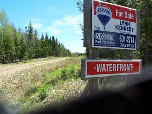 Water Frontage Property.Old farm 211 acre parcel of land. St. John's Newfoundland image 10