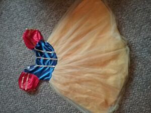 Halloween / Dress up Snow White outfit with wig. Girls small.