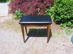 Small Bench With Lift Top Seat 24 by 13 and 22 Inches Tall
