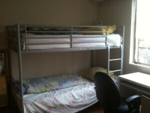 another Female- Large Room, WiFi + Utils. Incld. Now or Feb. 1st