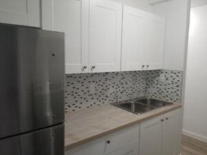 2 BEDROOM/1 BATHROOM VIBRANT BRAND NEW UPSCALE APARTMENT!