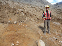 Placer Geologist