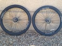 Mountain bike wheels: Alexrims 29""