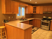 Solid Oak Kitchen Cabinets with Countertop - Great Condition