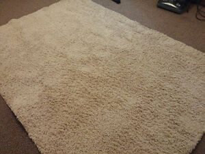 Area Rug 5 x 8 feet - In Perfect Condition