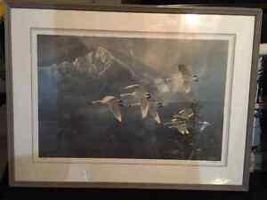 "Ted Blaylock - ""Long's Peak Trumpeter Swans"" Oakville / Halton Region Toronto (GTA) image 1"