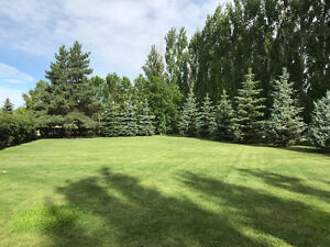 114 Butler Dr., Regina Beach -BEAUTIFULLY LANDSCAPED VACANT LOT!