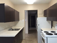 ONE Bedroom apartments close to the U of M