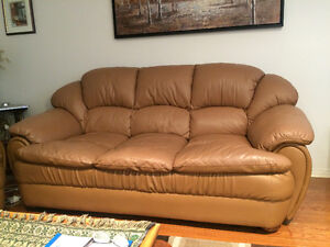 leather sofas and chair