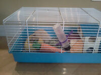 Cage avec hamster