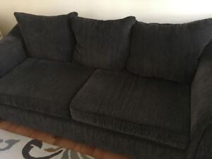 Pull out couch/Sofa bed