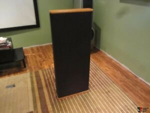DCM Timeframe Speakers TF500
