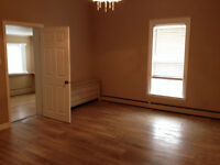 Downtown 1 bedroom apt - from 495!!!! To 595$