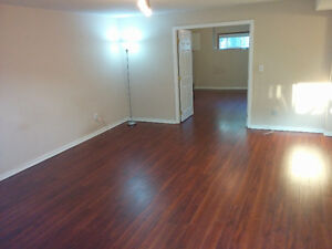 Huge one bedroom renovated  bsmt suite in Burnaby near SFU