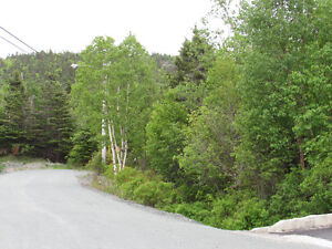 26-28 CROSS MEADOW, I ACRE BOREAL FOREST...CBS. St. John's Newfoundland image 6