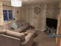 2 bedroom flat in Renforth Close, Gateshead, NE8 (2 bed) (#1177279)