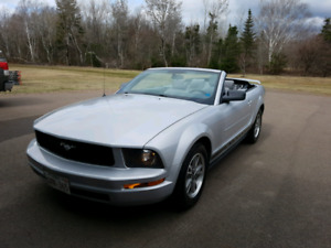 2005 Mustang Convertible for sale