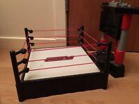 Wrestling arena bargain