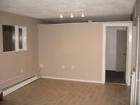 Small 1 bdrm daylight basement suite in North Kamloops