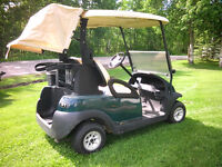 THE GOLF CART GUY SPRING! INTO SPRING GOLF CART SALE