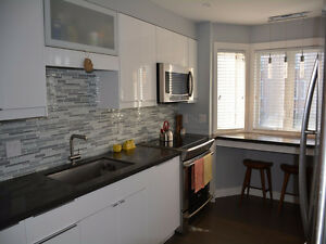 Trinity Bellwoods Renovated Townhouse inc parking and Locker