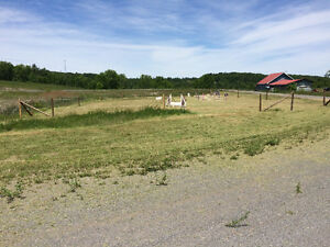 Share a Farm – Two Rooms Available