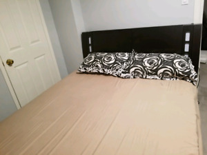 Modern contemporary bedset with storage -$650