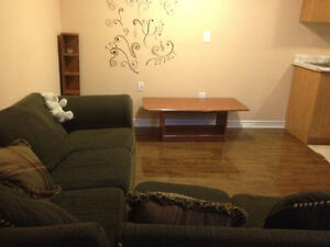 Newly Renovated 1 Bed Room Basement with Separate Entrance
