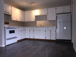 Newly Renovated 1br Apt Unit, Laundry-in-Unit, Available Now