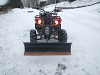 2011 ATV with Plow and Winch