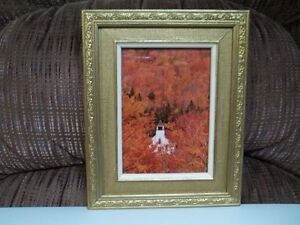 "Frame And Photo "" Autume In Vermont""."
