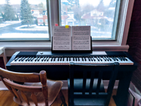 $20 Beginner Piano Lessons