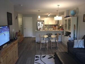 Apartment in Stony/will pay June rent for you/take over lease